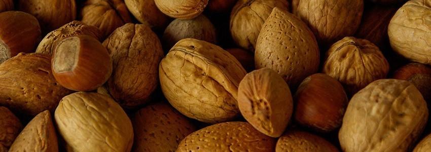 Gamme de fruits secs en toutes saisons