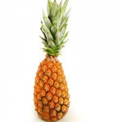 Ananas Bouteille