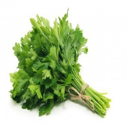 copy of Herbes bq
